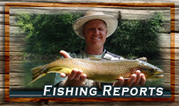 Reports from the Fishing at Asheville