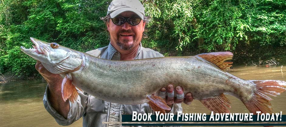 Booking A Fishing Trip With Asheville Anglers North