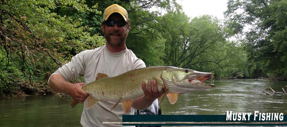Asheville anglers fishing guides weaverville nc for Fishing in asheville nc